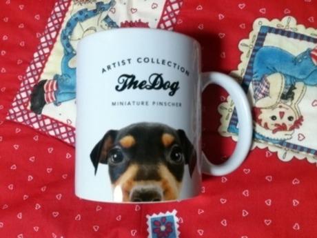 ミニチュアピンシャーの子犬(ID:1242311133)の3枚目の写真/更新日:2017-06-03